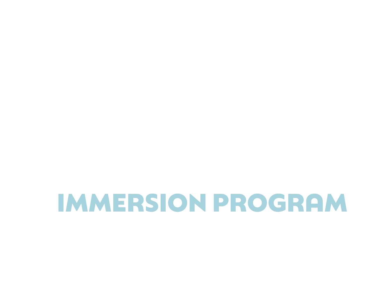 immersion-project